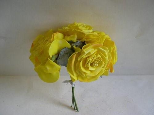 Wild Rose 10 cm. GEEL ORA COMB bundel op=op Wild Rose
