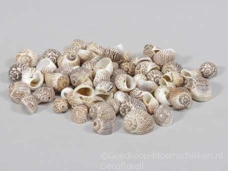 Pull Muttai schelpen naturel, 500 gram