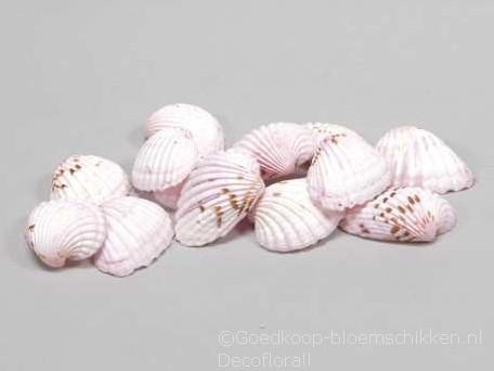 Tiger Chippy schelpen roze, 500 gram