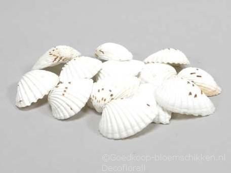 Tiger Chippy schelpen naturel, 500 gram
