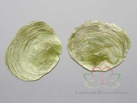 Capiz Camar schelpen lichtgroen, 250 gram
