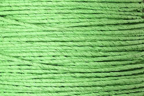 Bindwire papierdraad 10 m 2 mm Lime Groen  Kleinverpakking