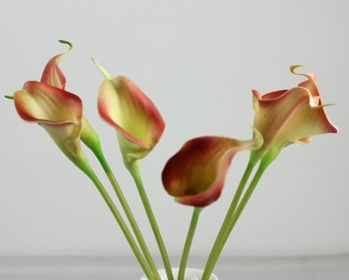 Calla Real Touch Great /- 7 cm. en 37cm lang. / st Calla Real Touch +/- 7 cm.