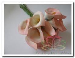 Calla creme-roze 3. 5*5cm. Per doosje Calla creme-roz