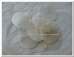 Capiz shell Camar schelpen 500 gram. GEBOORD geboord, 500 gram