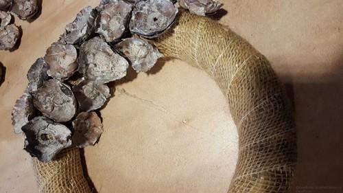 Coco flower frosted Salmon Zalm 250 gram Mooi en lekker goedkoop-2