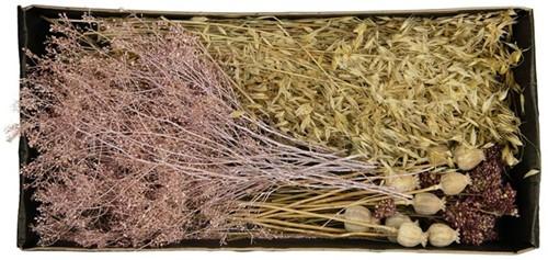 Droogbloempakket Dried flowers mix tray Pink droogbloem boeketten zelf maken