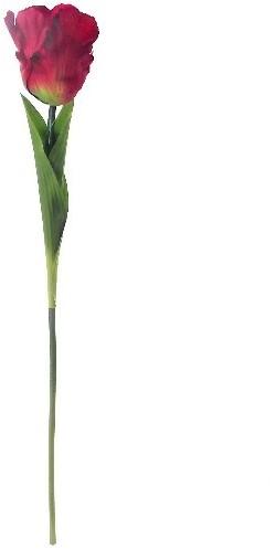 . Zijde Tulpen