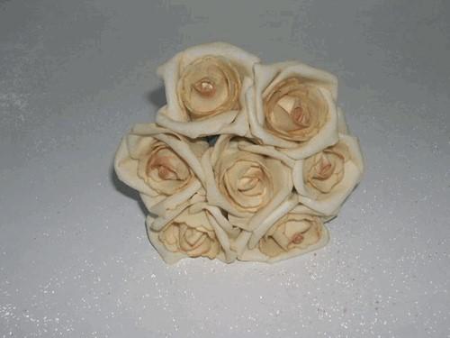 foam Rose Emilia 6cm. Cava Sand Doos 42 voordeelpak