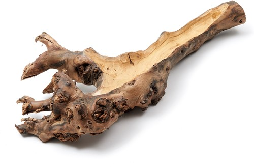 Mulberry root wortelstronk hollow naturel 40-50cm