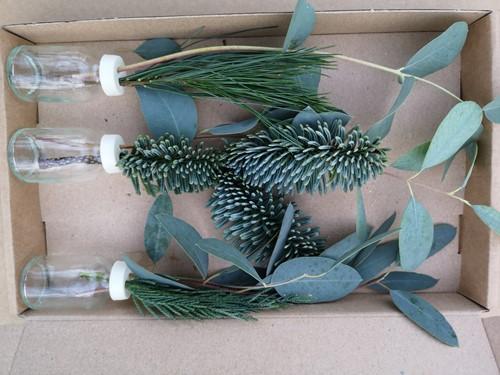 3 Flesjes bloemen Geurend wintergroen + Eucalyptus+Conifeer in een doosje Een groet die iets doet