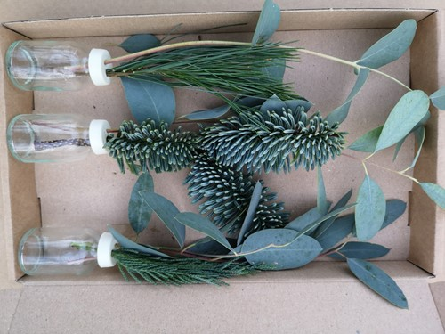 3 Flesjes bloemen Geurend wintergroen + Eucalyptus+Nobilus in een doosje Een groet die iets doet