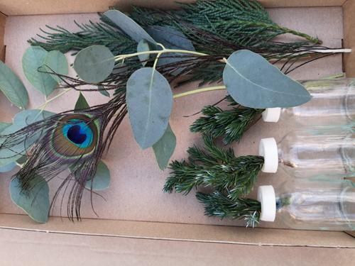 3 Flesjes bloemen Gemengdgroen + Eucalyptus + 1 Pauwenveer  in een doosje Een groet die iets doet