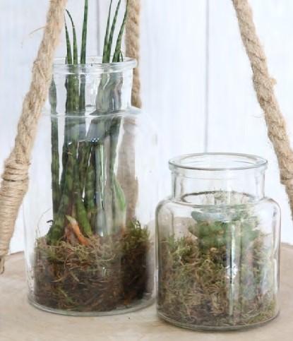Glas vaas Flesje Glas voor schelpen 12*7cm. Glas voor schelpen