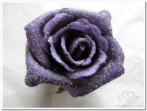 foam Rose Emilia 6cm. snow Purple BUNDEL 7 bundel 7 stuks
