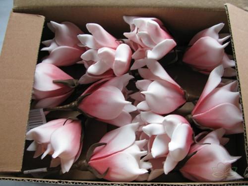 Magnolia foambloem Kort Soft Roze DOOS 12 stuks Magnolia