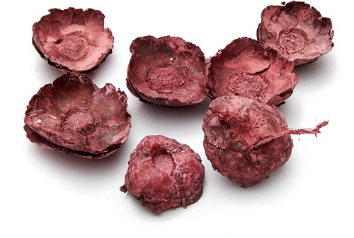 Coco flower  Frosted red 250 gram