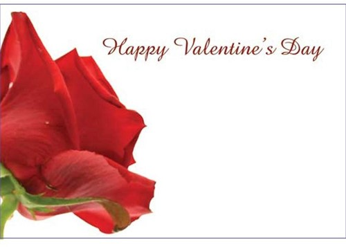 Bloemenkaartjes Happy Valentine's Day RODE ROOS pakje 50 Wenskaarten