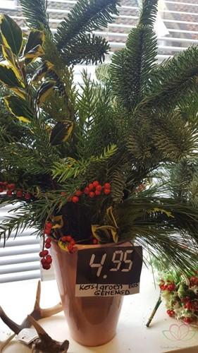 KerstGroen VERS gemengd per bos KerstGroen vers