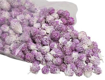 Losse bloemhoofdjes Purple daisy loose  strooibloemetjes