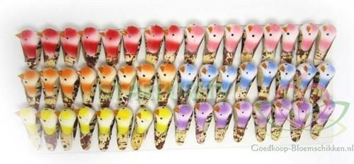 48 minivogeltjes +/- 3 cm. 6 verschillende kleuren ds48 mini vogeltjes