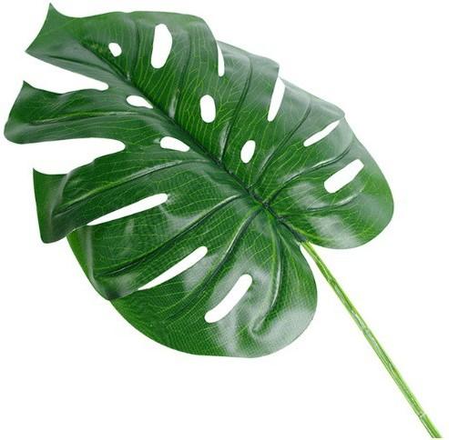 Monstera blad Monsterablad 24*40cm. /st - 24*40 VT Wonen Botanical-2