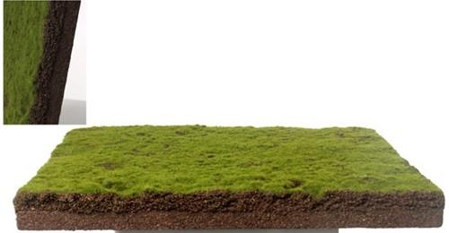MOSPLAAT Paneel mos kunst +/- 50*50cm. Moswand mospaneel