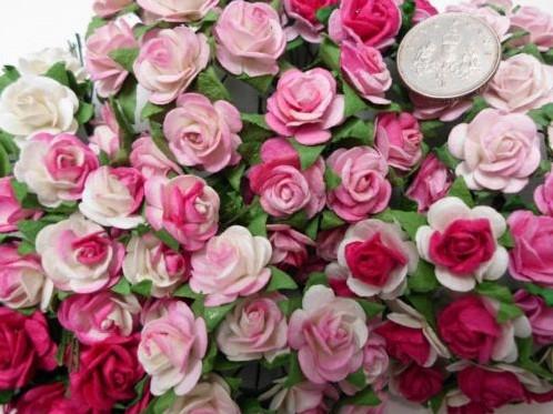 Mulberry Roosjes All PinkMIX 10-15 mm / PAK Mulberry Roosje