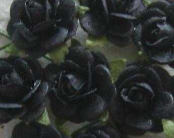 Mulberry Roosjes Zwart 10-15 mm / PAK Mulberry Roosje