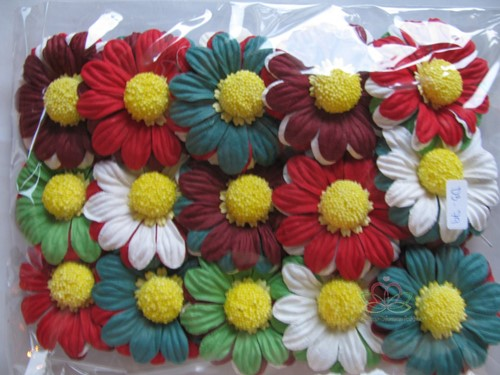 Mulberry Chrysant Christmas mixed +/-65 mm / PAK15 Mulberry Chrysantje