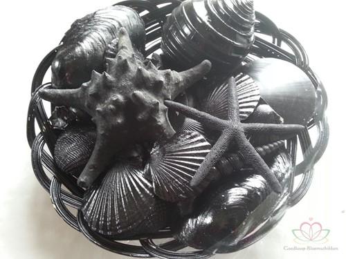 Mix Schelpen en Zeesterren Zwart in mand 25 cm Schelpen- zeesterrenmix