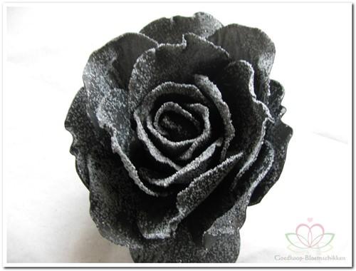 foam Rose Sophie 15cm. snow Black Doos12 voordeelpak