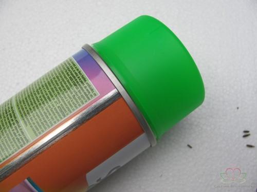 Spring pro Florist Fluor Green 699 Deco Spray 400cc Neonverf Bloemen