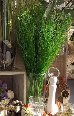 Curly grass pick 16 sprieten op 1 pick 65 cm. Curly grass pick 16 sprie