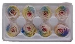 Geconserveerde rozen Soft Rainbow Doos 8 Geconserveerd