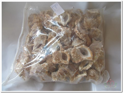 Pennchiman schelpen naturel, 1 kilo