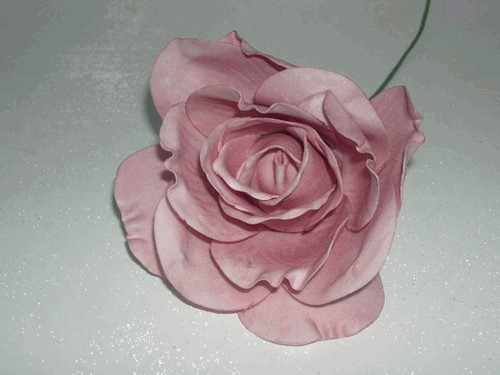 foamrose Sophie Old Pink OUDROZE 15 cm. / DOOS12 foamrose Sophie