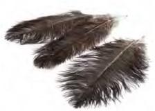 Struisvogel veren Bruin  40-45 cm 3 stuks Ostrich feather 40-45cm