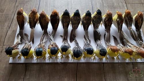 Vogeltje Natuurlijke kleuren Handmade 11*5cm. 3 verschillende Handmade
