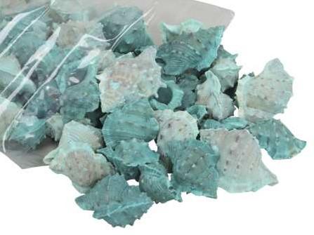 White Chimman schelpen groen, 500 gram