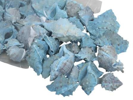 White Chimman schelpen blauw, 500 gram