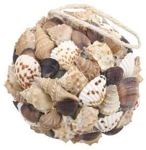 schelpenbol mixed assorted 10 cm. naturel, 10 cm.