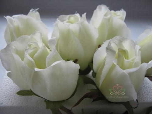 Roosjes 5-6cm. Zijde Best Quality Light White Ivory 10 st Roos zijdebloem